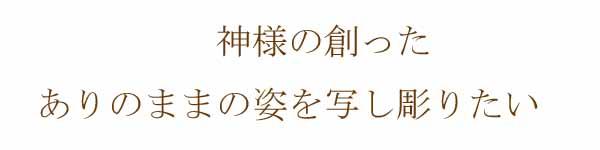 taitoru02_2.jpg